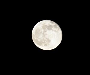 Full Moon (c) 2014 Diana Belchase